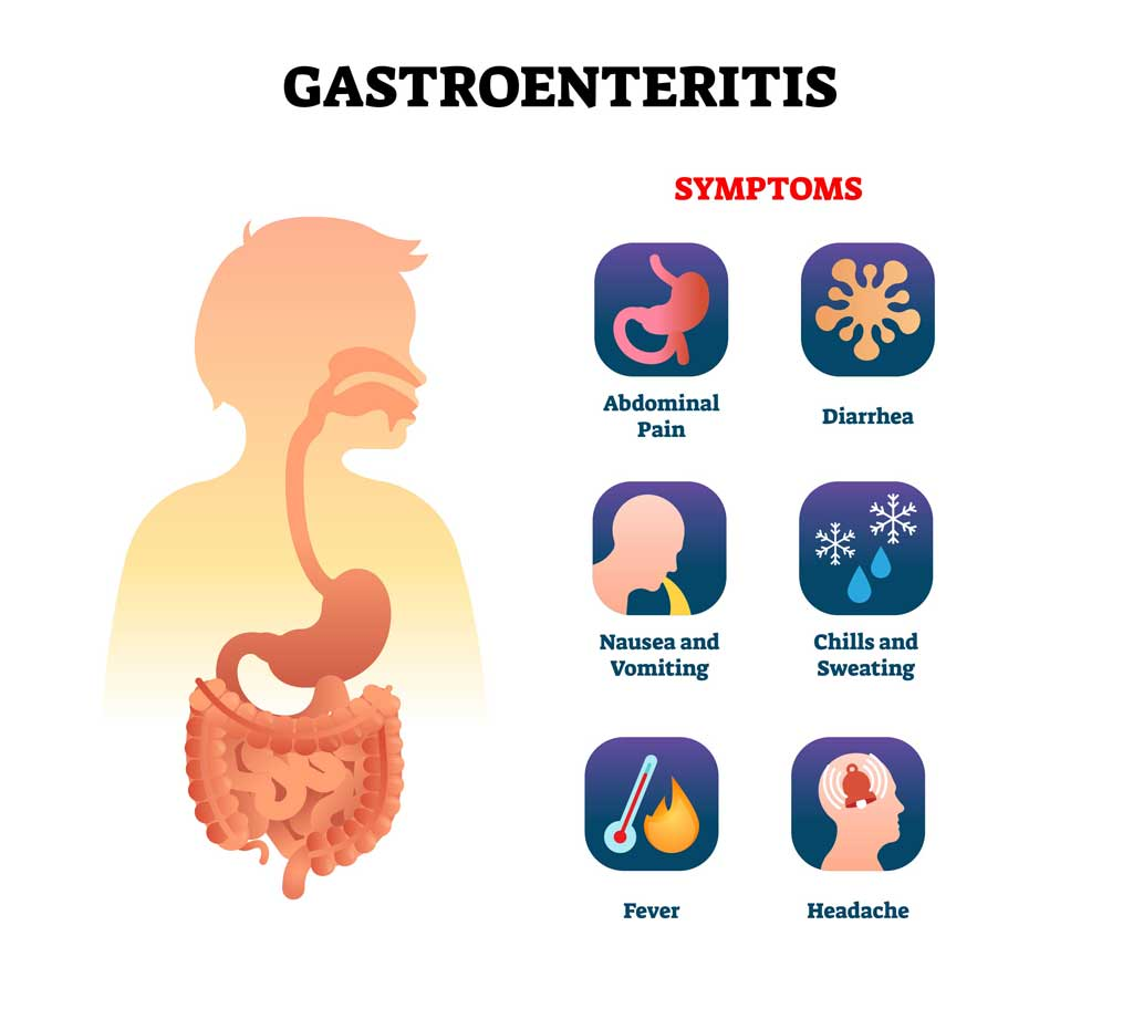 gastroenteritis_food_illness_safety